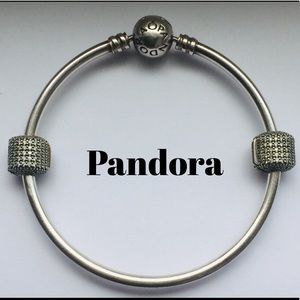 Pandora Bangle with SS Pave Barrel Clips